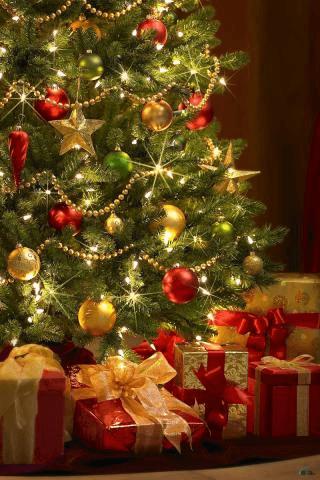 С Новым годом и Рождеством Вас!